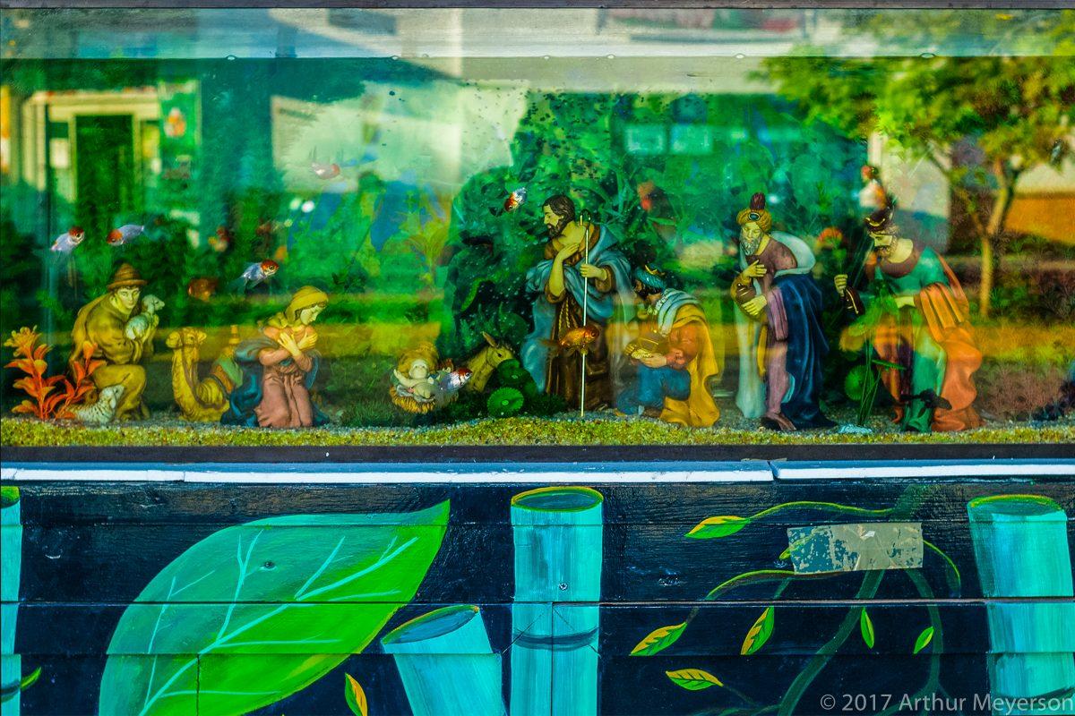 Holy Aquarium, Cozumel