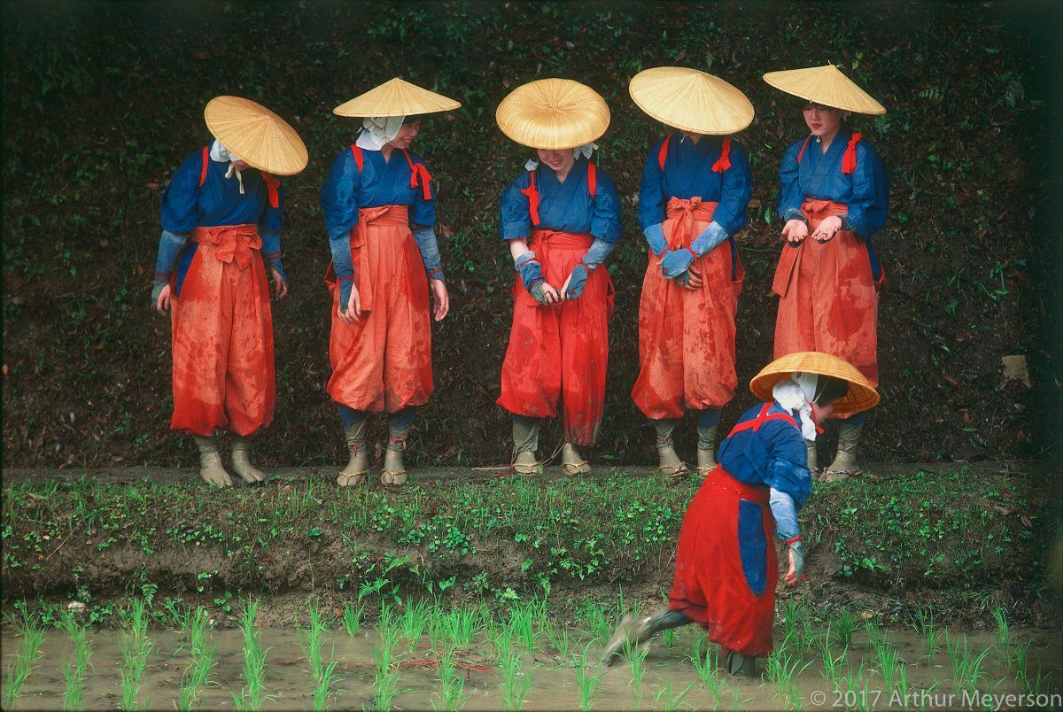 Rice Planting Festival, Kyoto, 1984 (MFAH Collection)