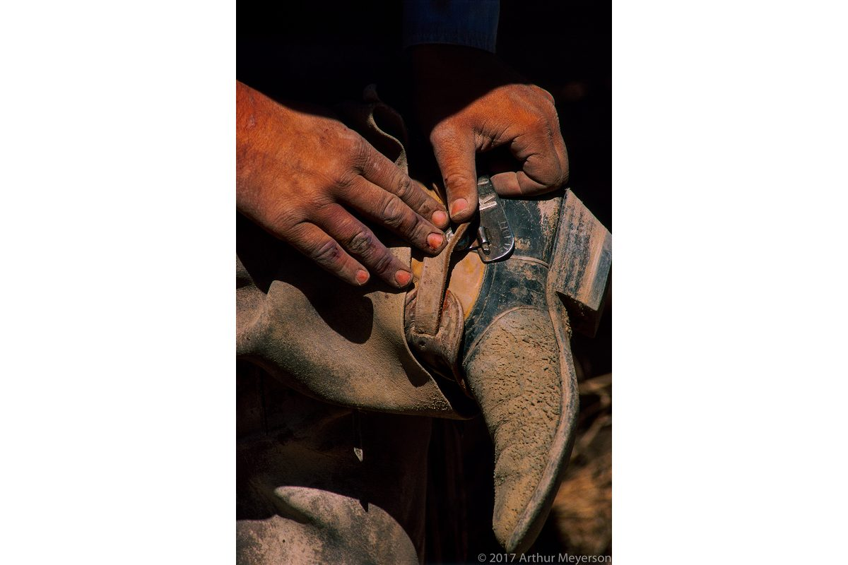 Hands and Spur
