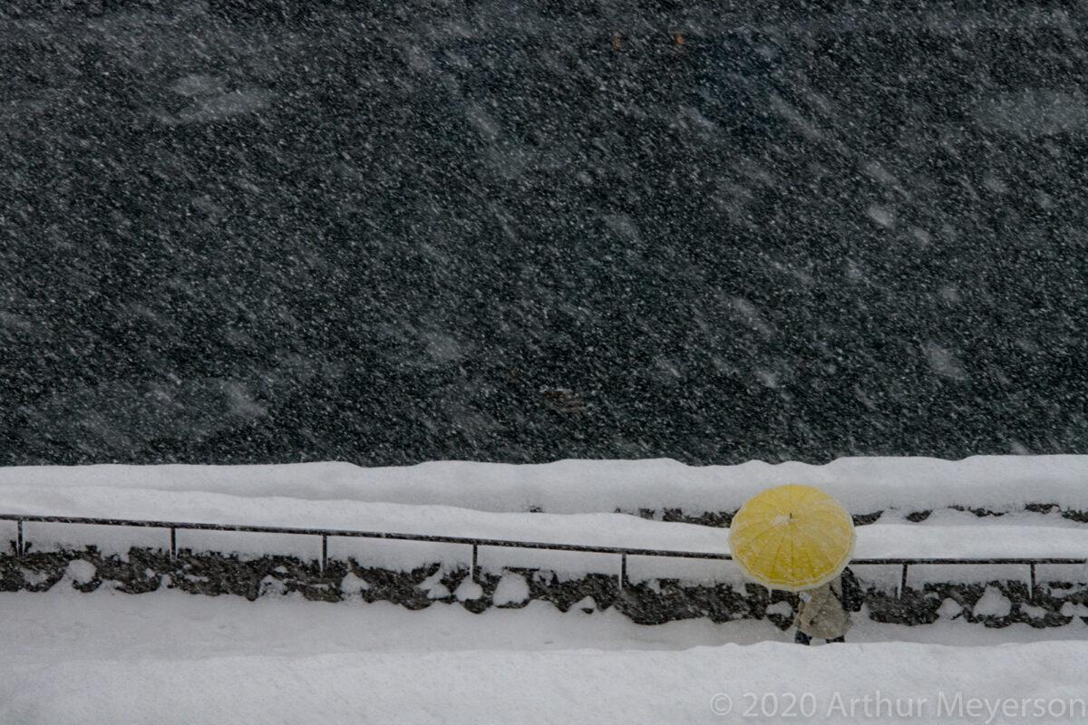 Yellow Umbrella, Japan